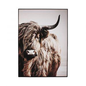 Bild Highland